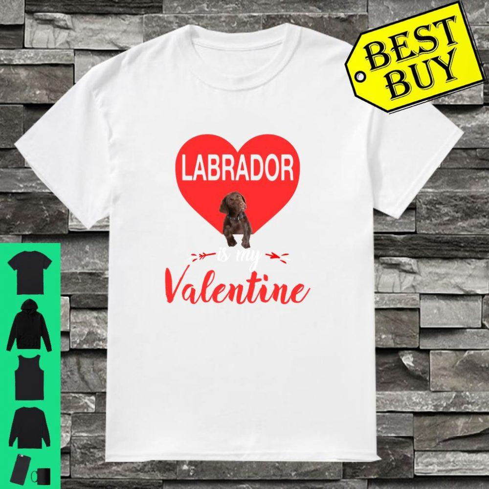 Labrador Is My Valentine Costume Gift shirt